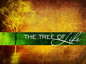 tree_7242cp